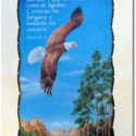Pergamino Piel Aguila